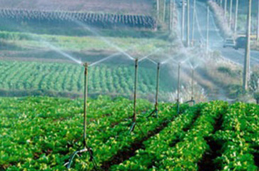 农田喷灌使用现场